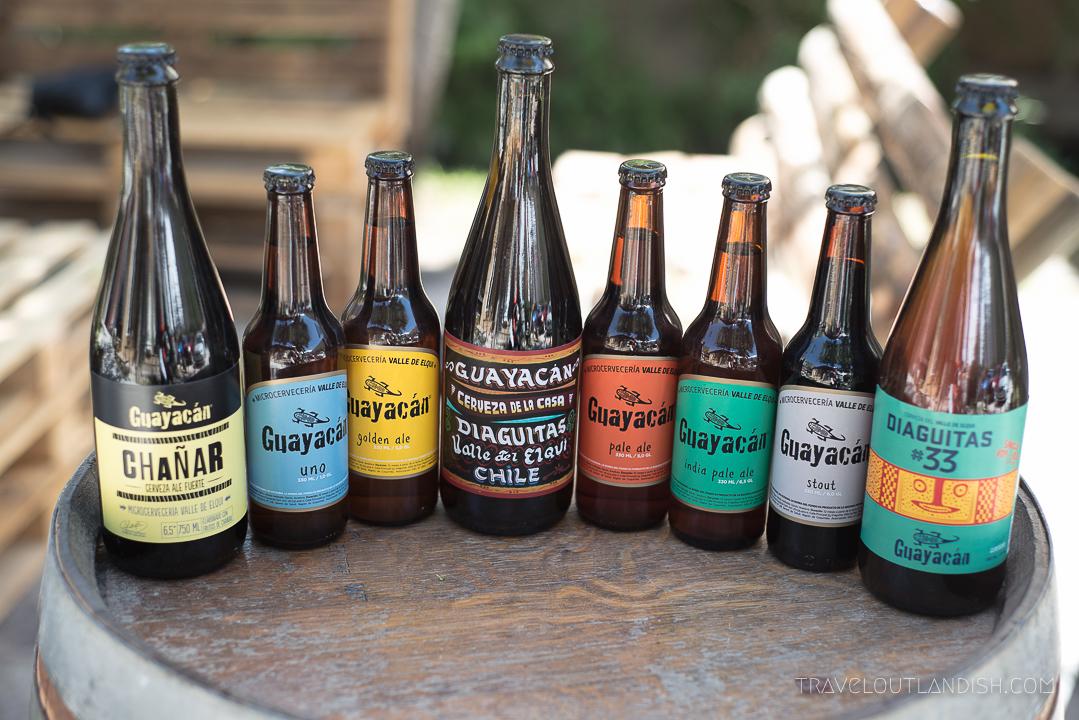 Fun Things to do in Chile - Guayacan Brewery