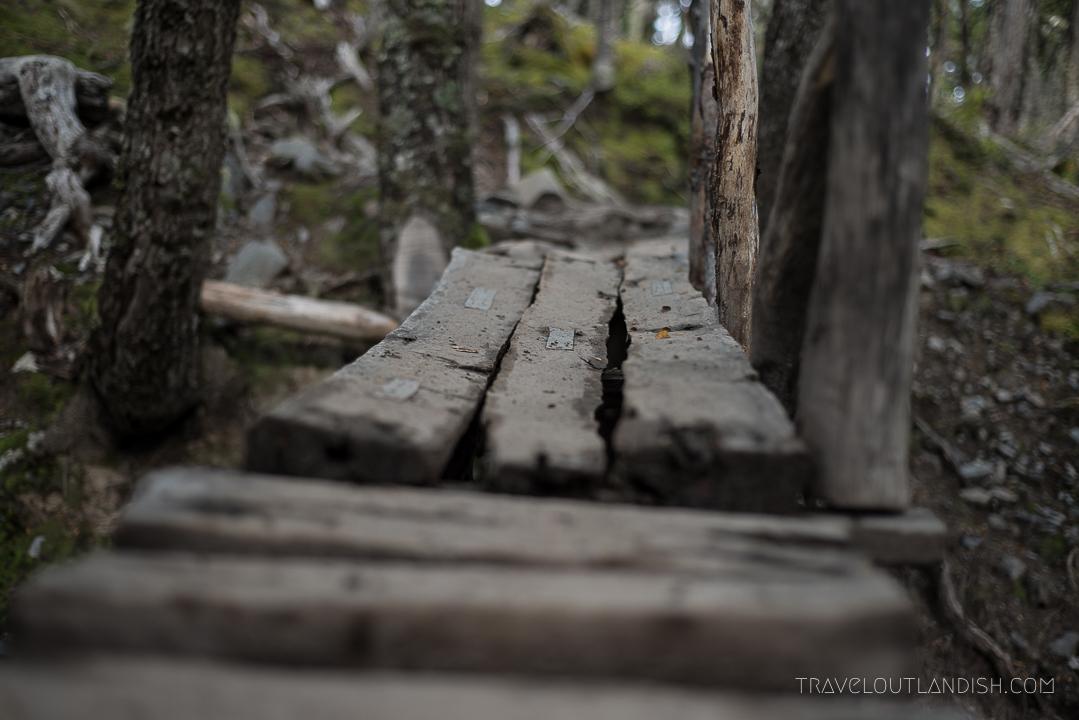 Torres del Paine Trekking Route - Bridge