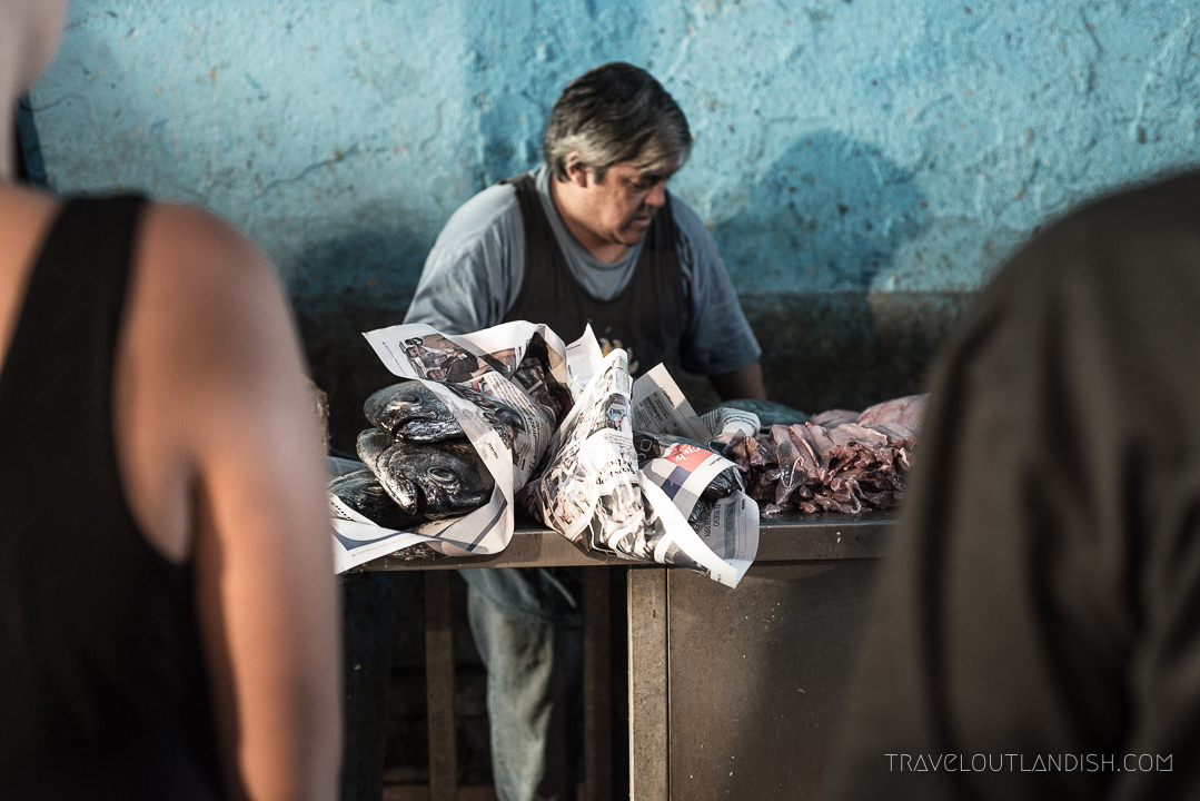 Fun Things to do in Chile - Valparaiso Fish Market