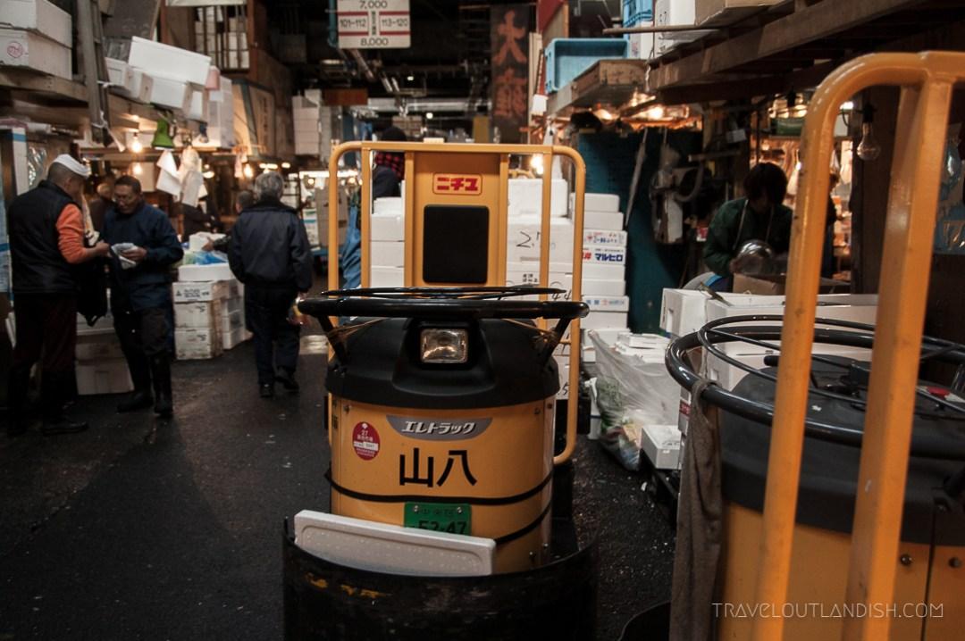 Tsukiji Fish Market in Tokyo - Mover