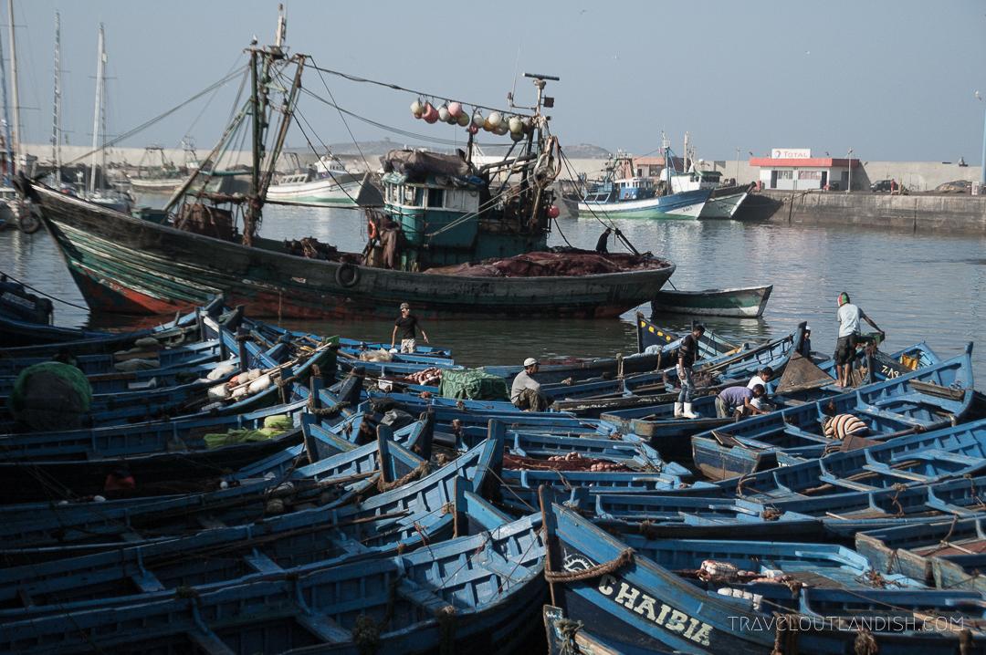 Essaouira Fish Market - Harbor