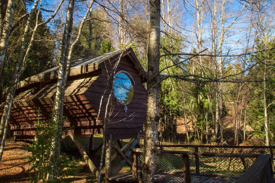 Unusual Hotels in South America - Canopy Village