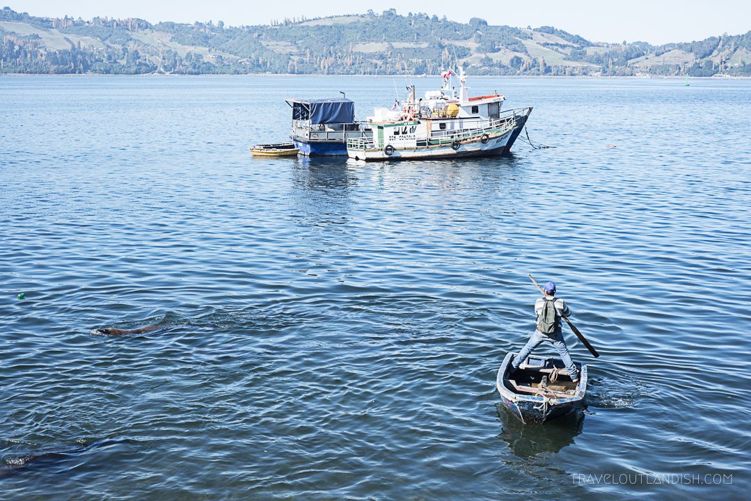 Fun Things to do in Chile - Local Market Chiloé