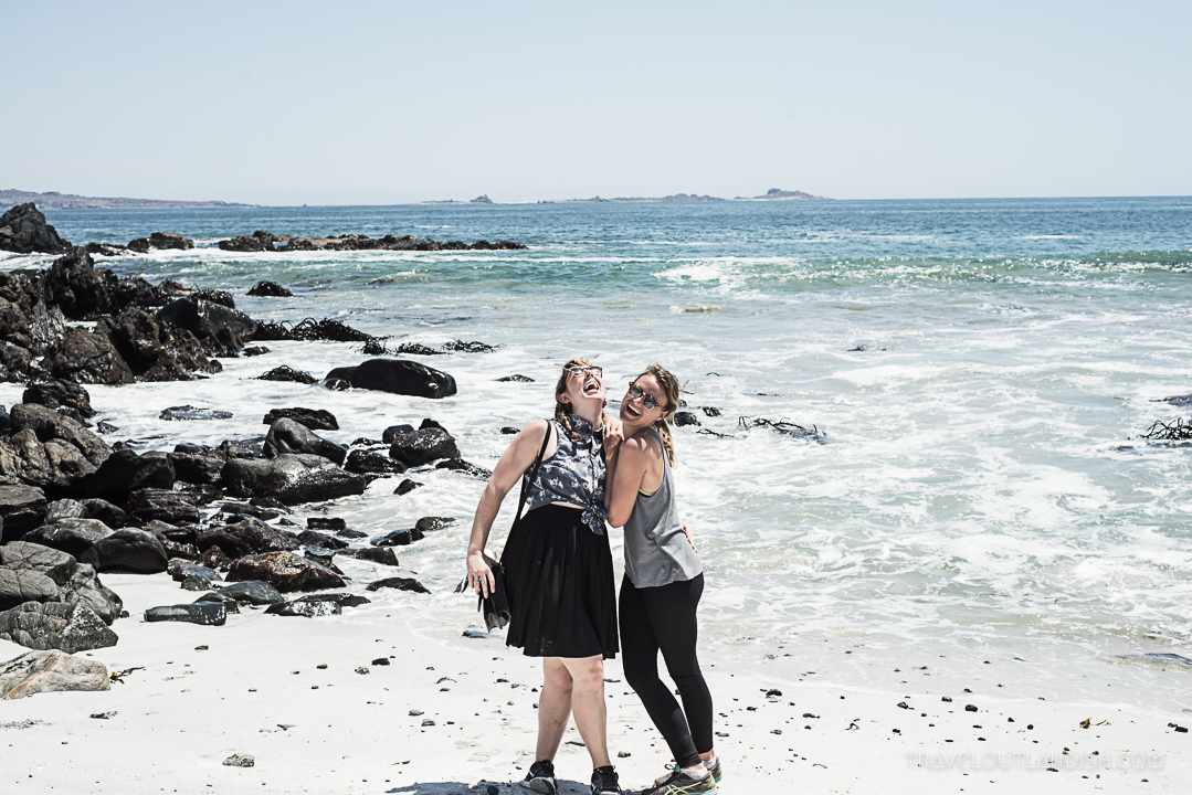 Photos of Chile - Isla Damas