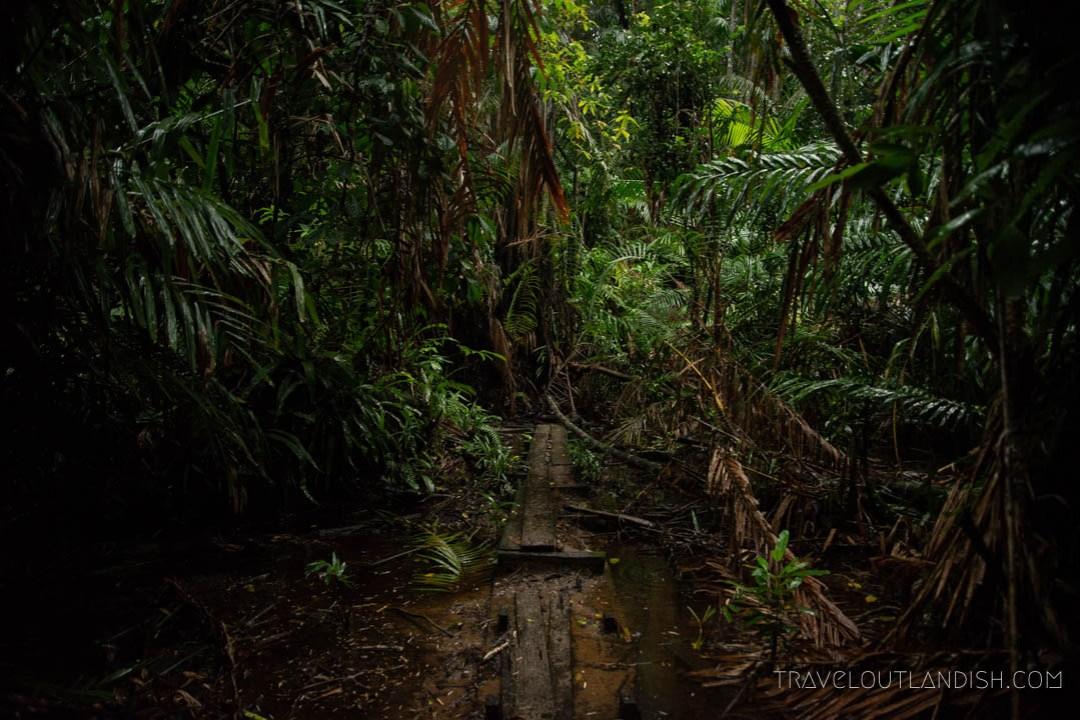Bako National Park - Telok Paku