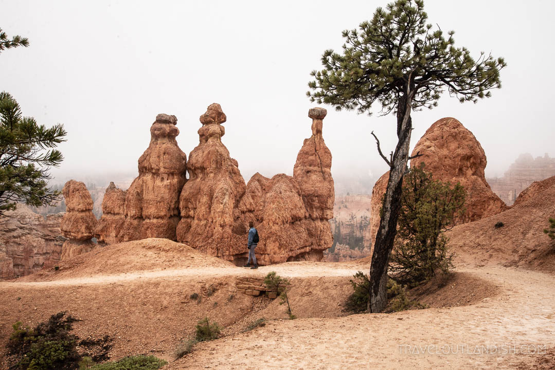 Rock Formations while Hiking the Queen's Garden Trail in Bryce Canyon