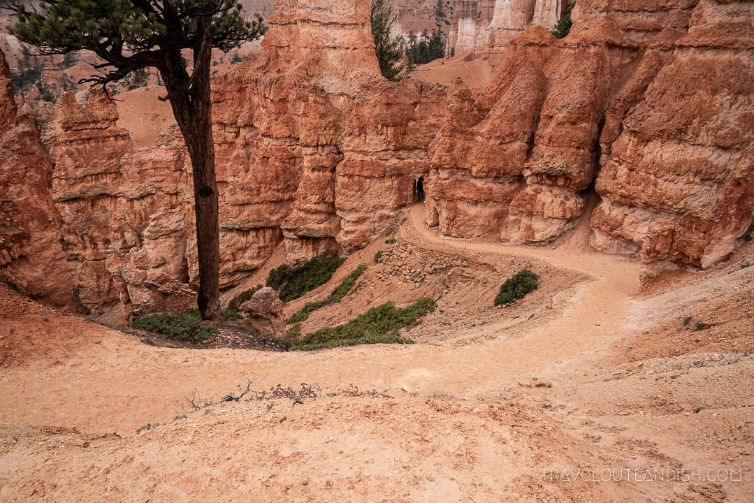 Hiking in Bryce Canyon: Looking down from top of Queens Garden Trail