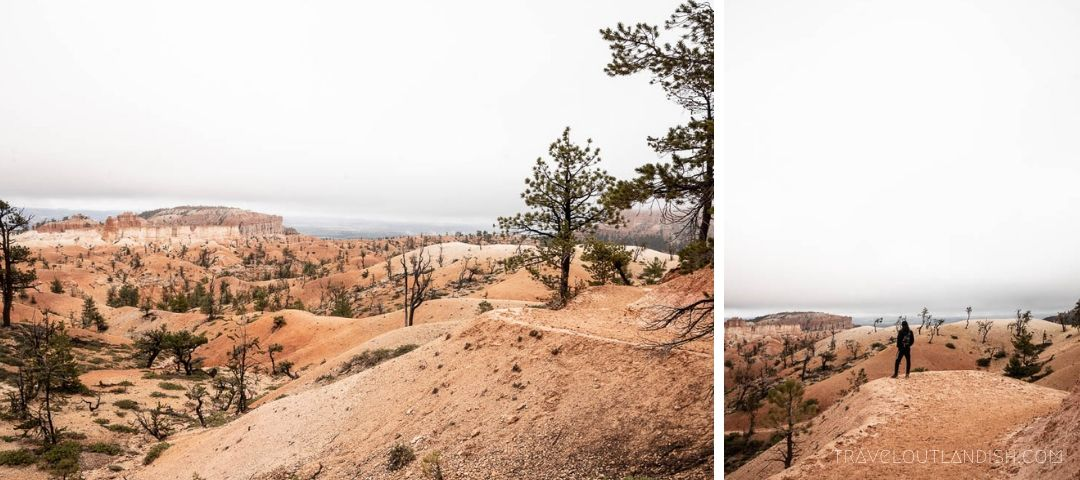 Bryce Canyon Hiking: Looking out from the edge of the Queen's Garden Trail