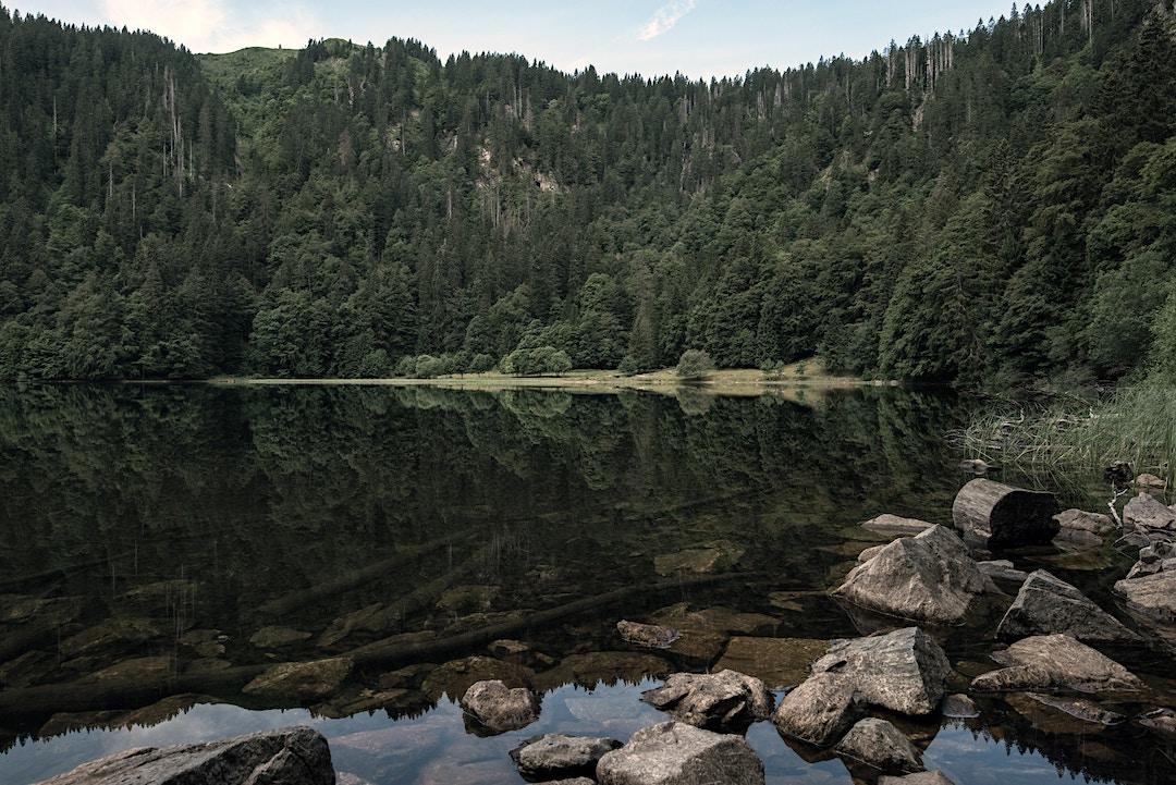 The Westweg in Germany