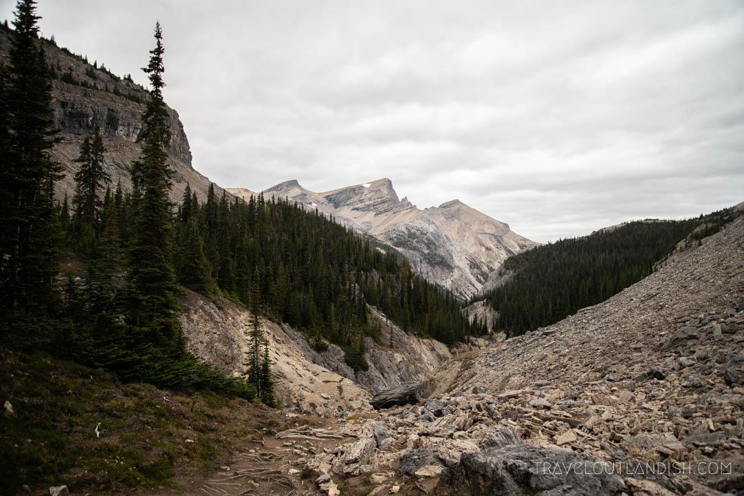 Bow Hut Hike to Banff