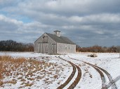 Winter scene in the Ram Pasture, Sanford Farm Park.