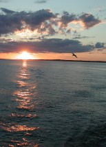 The Sunset on the ferry