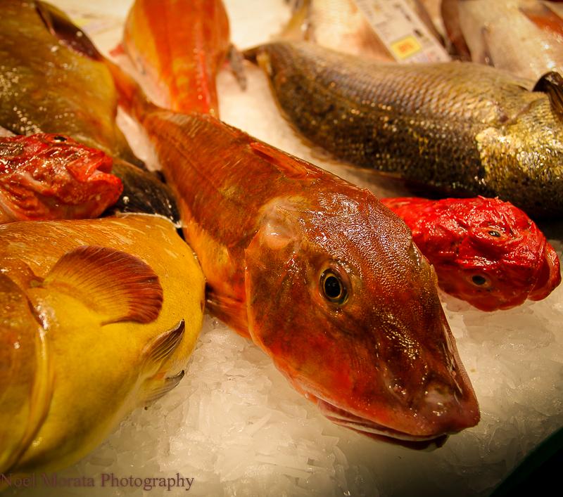 Fish display at La Boqueria