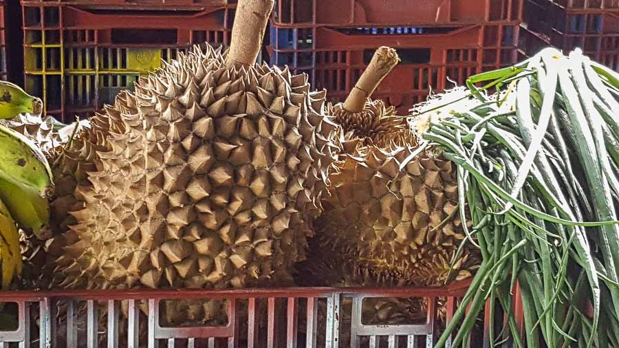 Durian ropical fruit from Hawaii
