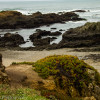 Glass beach at Fort Brag -Travel Photo Mondays #10
