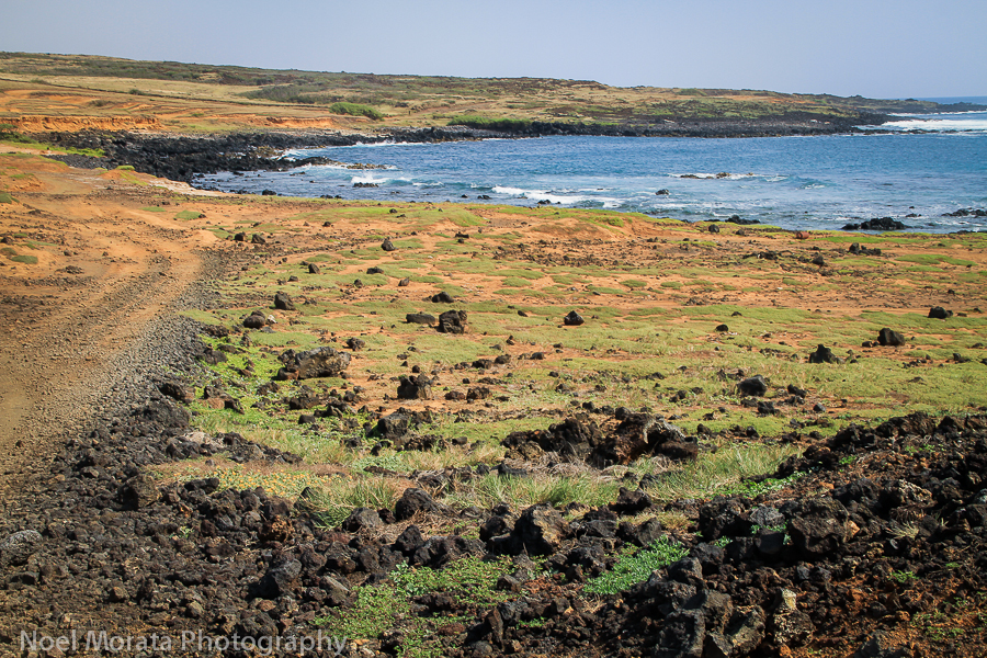 Hike to the green sand beach