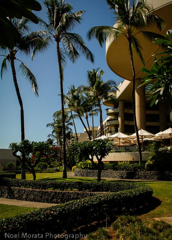 Hapuna Prince Hotel grounds