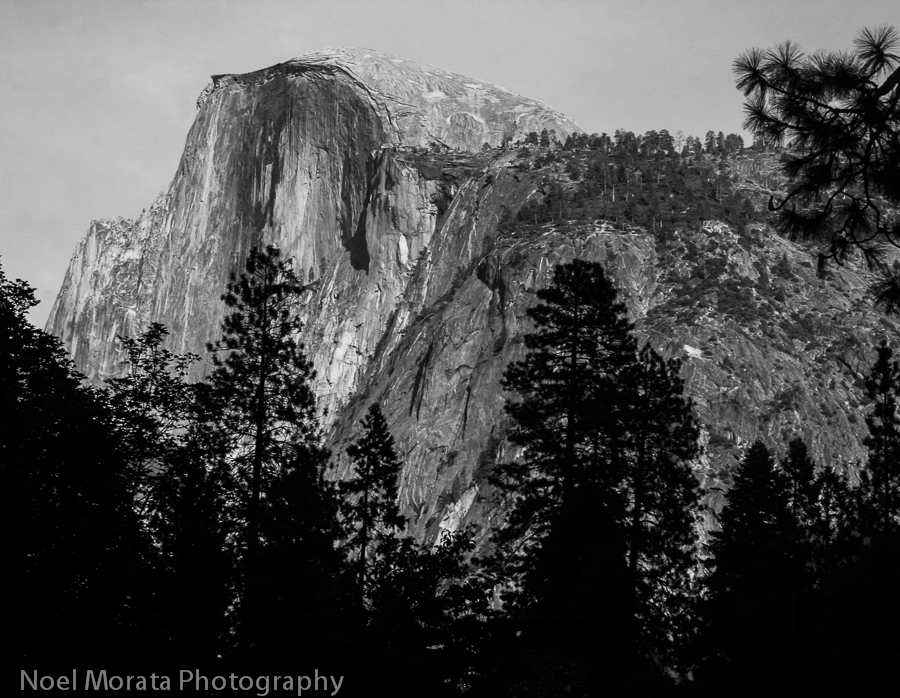 Half Dome in black and white