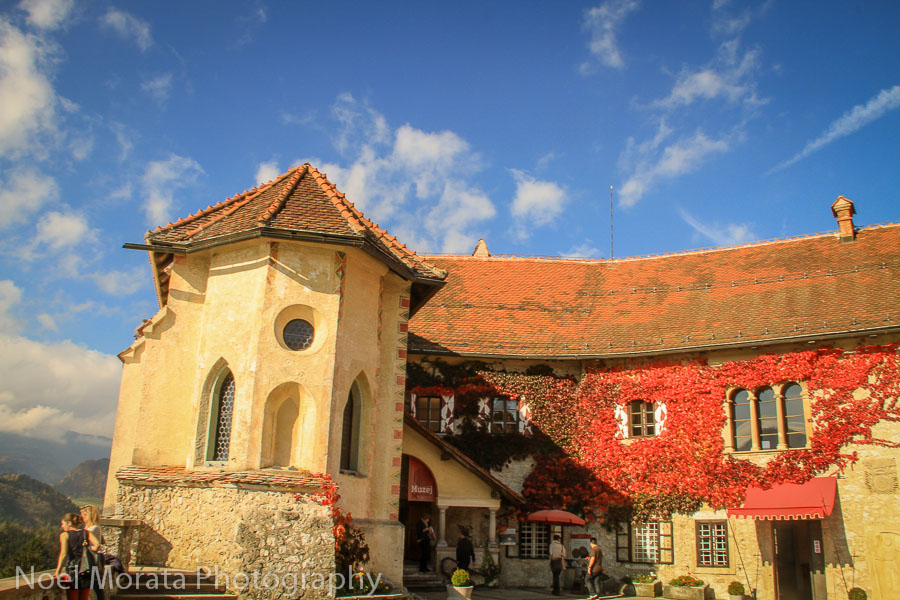 Main entry at Bled Castle with red ivy