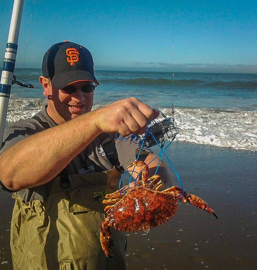catching crabs for christmas at baker beach