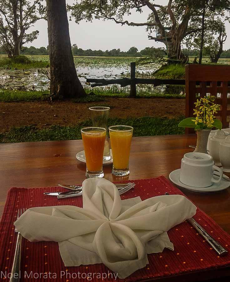 Breakfast with an island view, Cinnamon Lodge Habanara