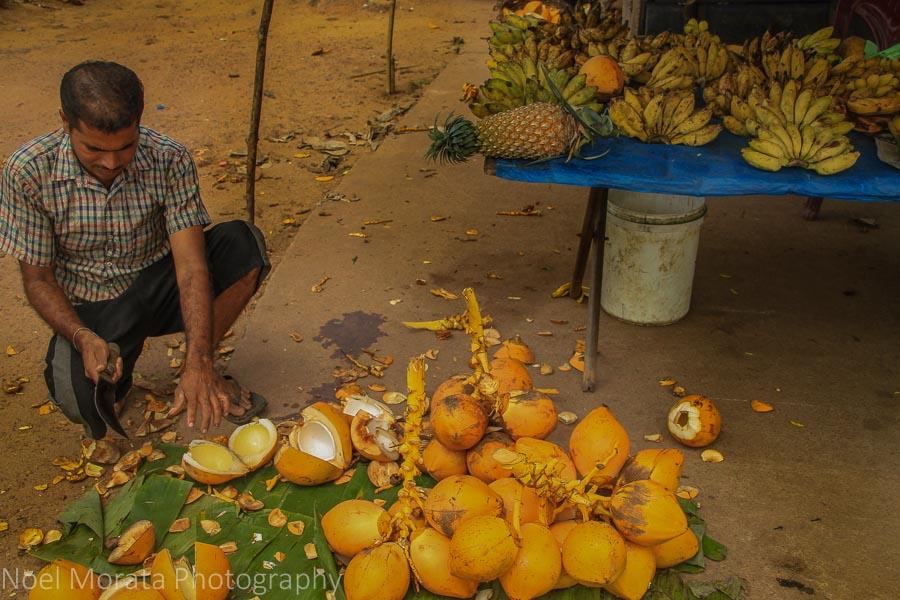 Negombo produce market