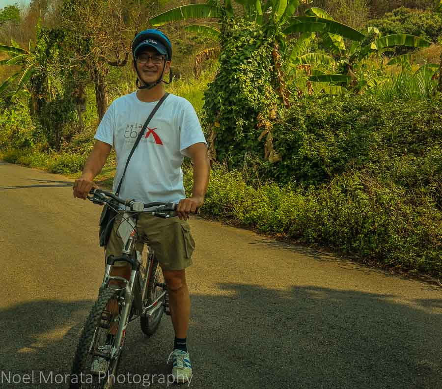 Biking along the rural roads to a tea plantation in Northern Thailand