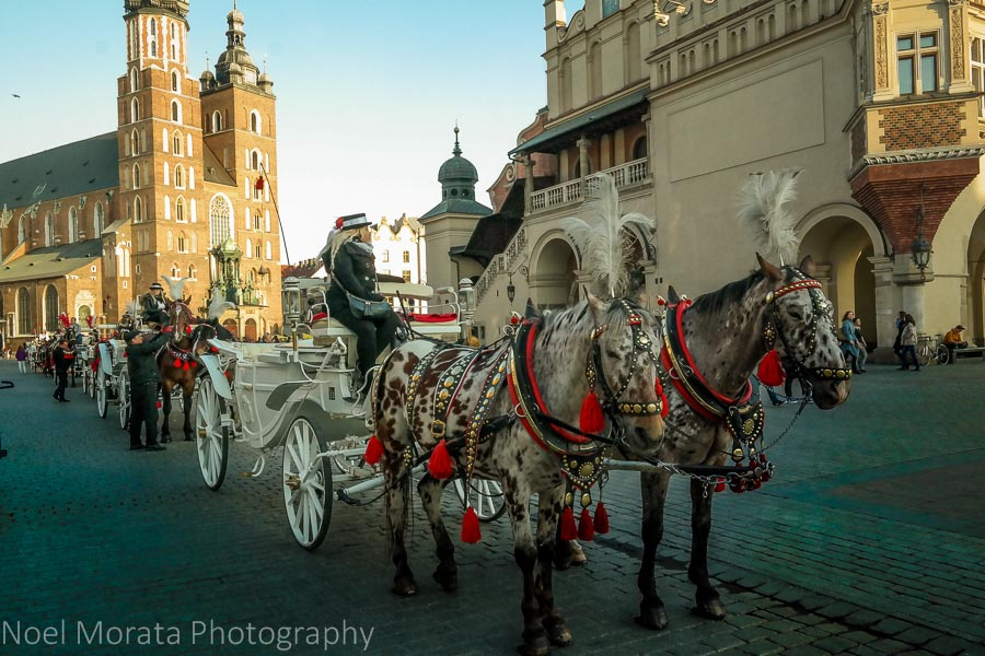 Krakow, Poland - a first impression, horse drawn carriages on the main square