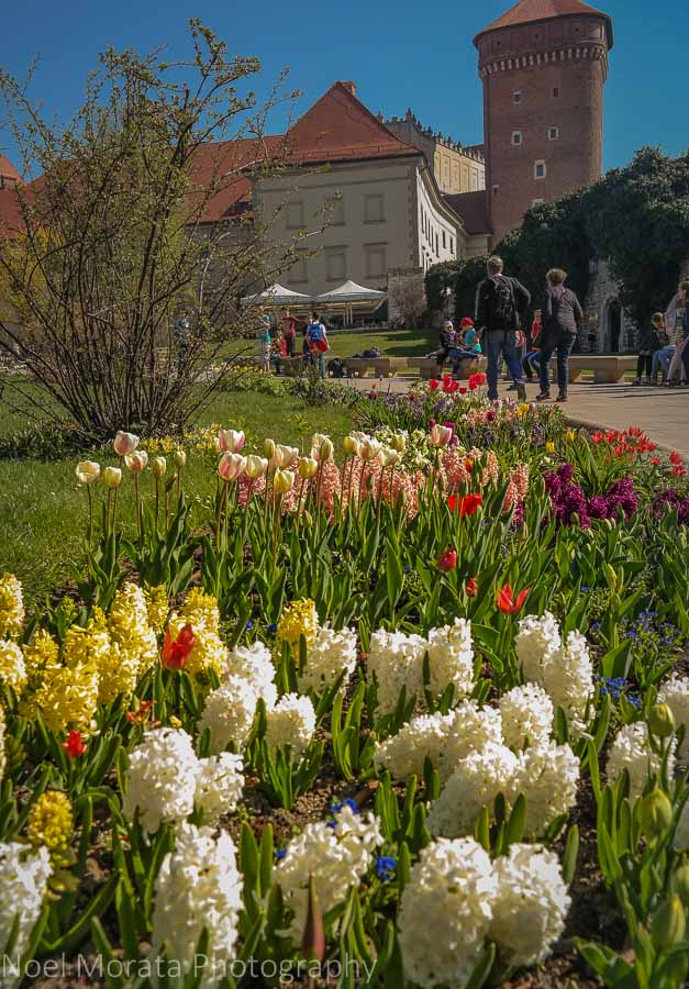 Krakow highlights in one day - Spring gardens fronting Krakow cathedral