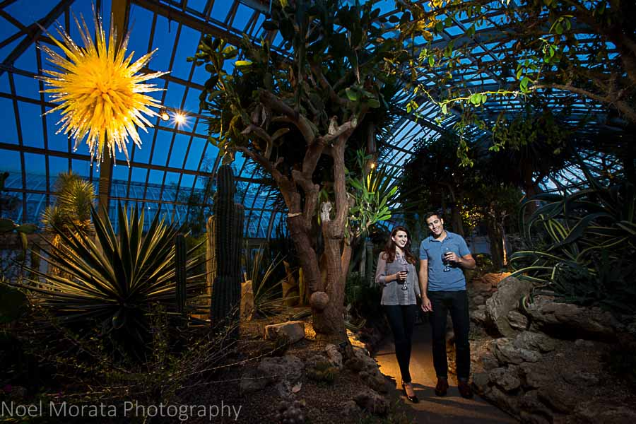Phipps fundraiser - Phipps conservatory tour