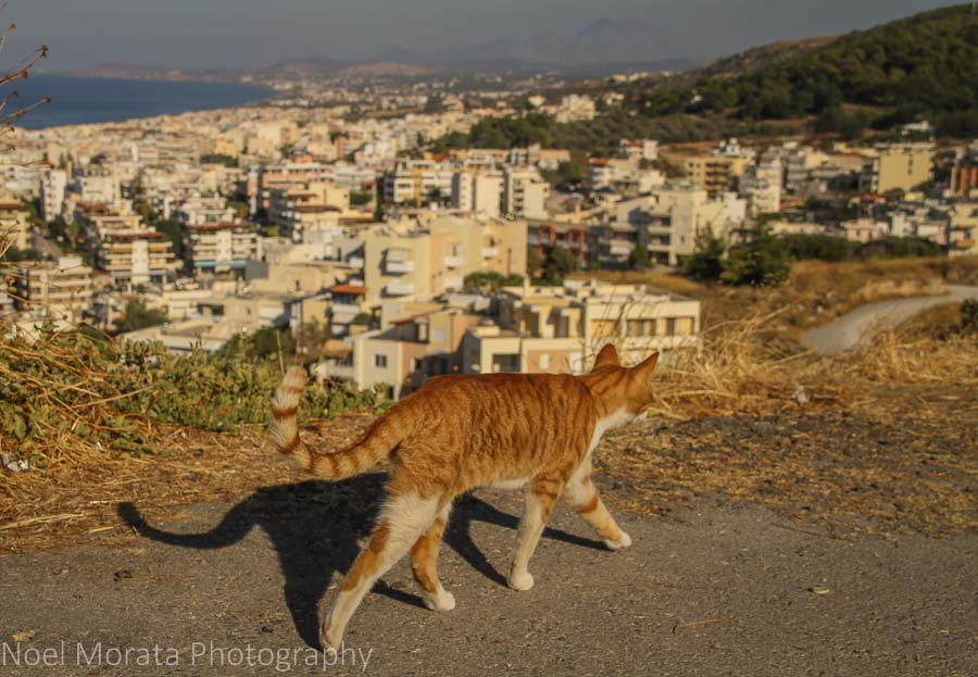 Enjoying the views above Heraklion city and port in Crete, Greece