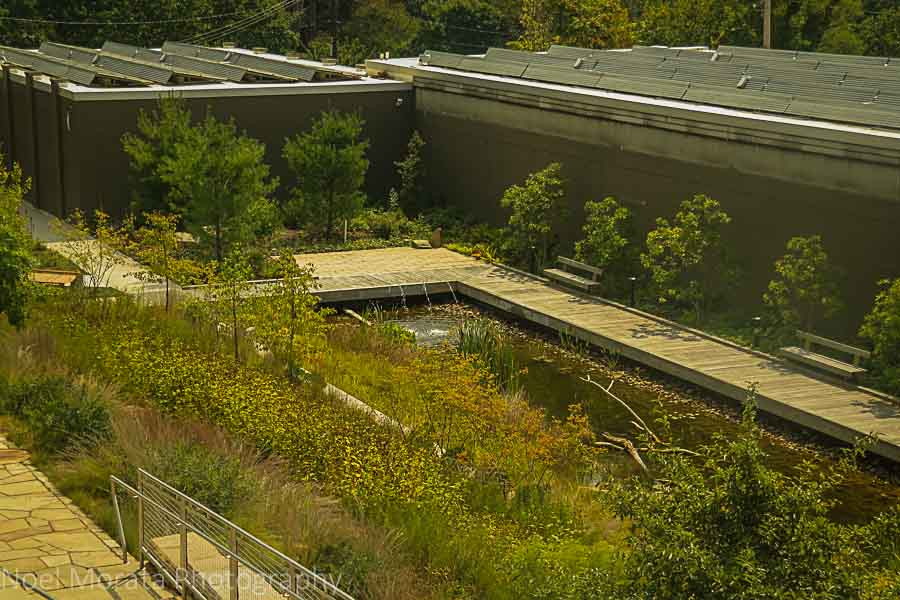 Green innovation at Phipps conservatory