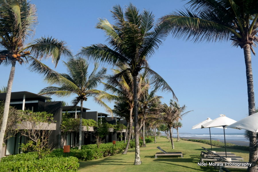 Grassy expanse and beach - Alila Hotel and journey