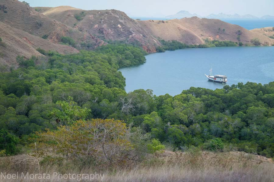Looking down at the harbor at Rinca island - Visiting Komodo National Park