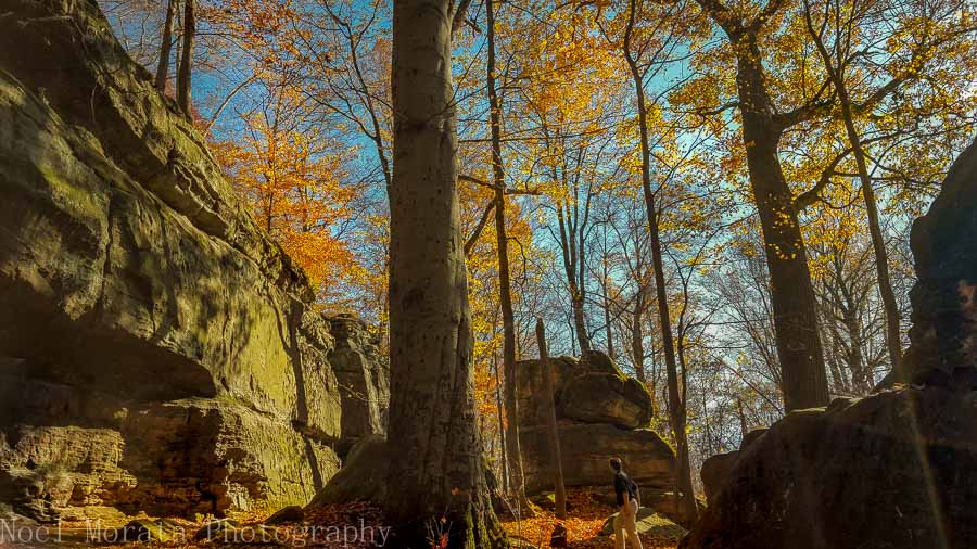 Climbing up to Whipps Ledges at Hinckley Reservation in Ohio