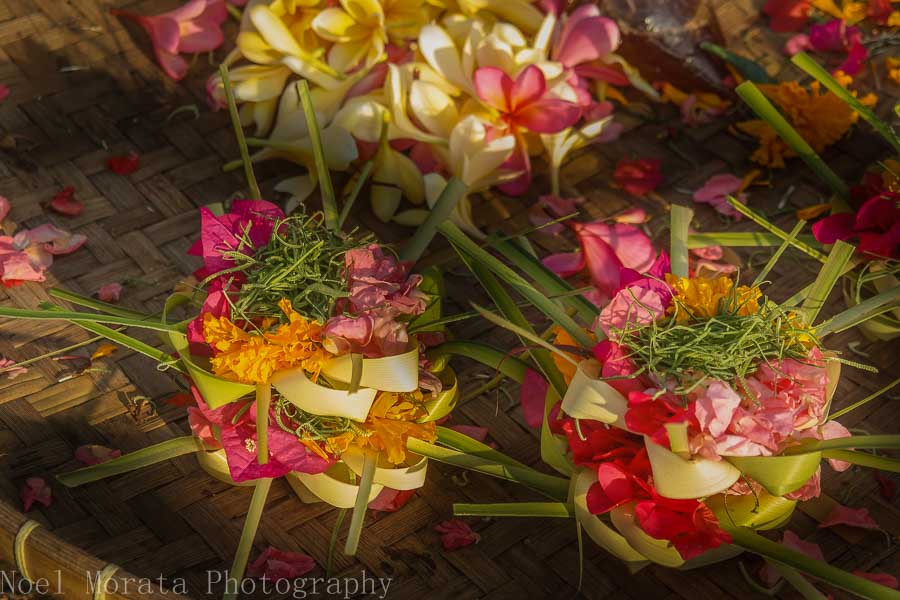 Daily Bali flower offering - Markets in Bali
