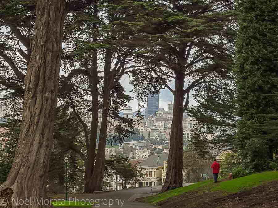 Alamo Square park - Fun and unusual activities to do in San Francisco