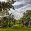 Visit Miami - Miami Beach Botanical Gardens