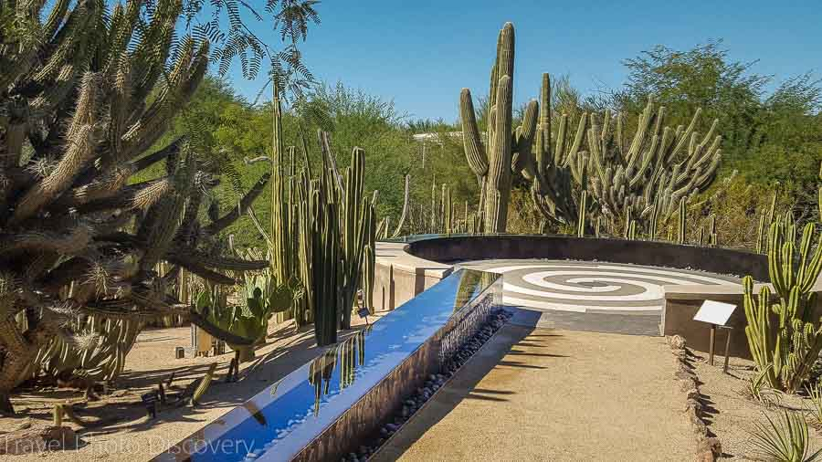 Sculpture garden Desert Botanical Garden in Phoenix Arizona