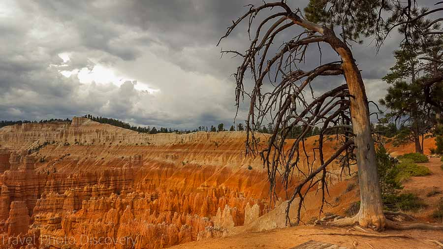 Visiting Bryce Canyon National Park