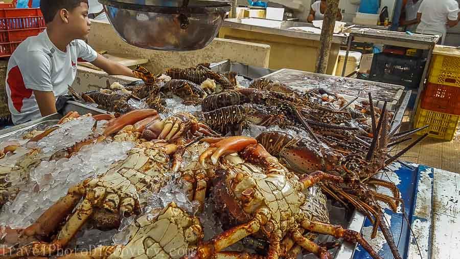 Mercado des Marisco Casco Antigua Top 15 things to do visiting Panama City