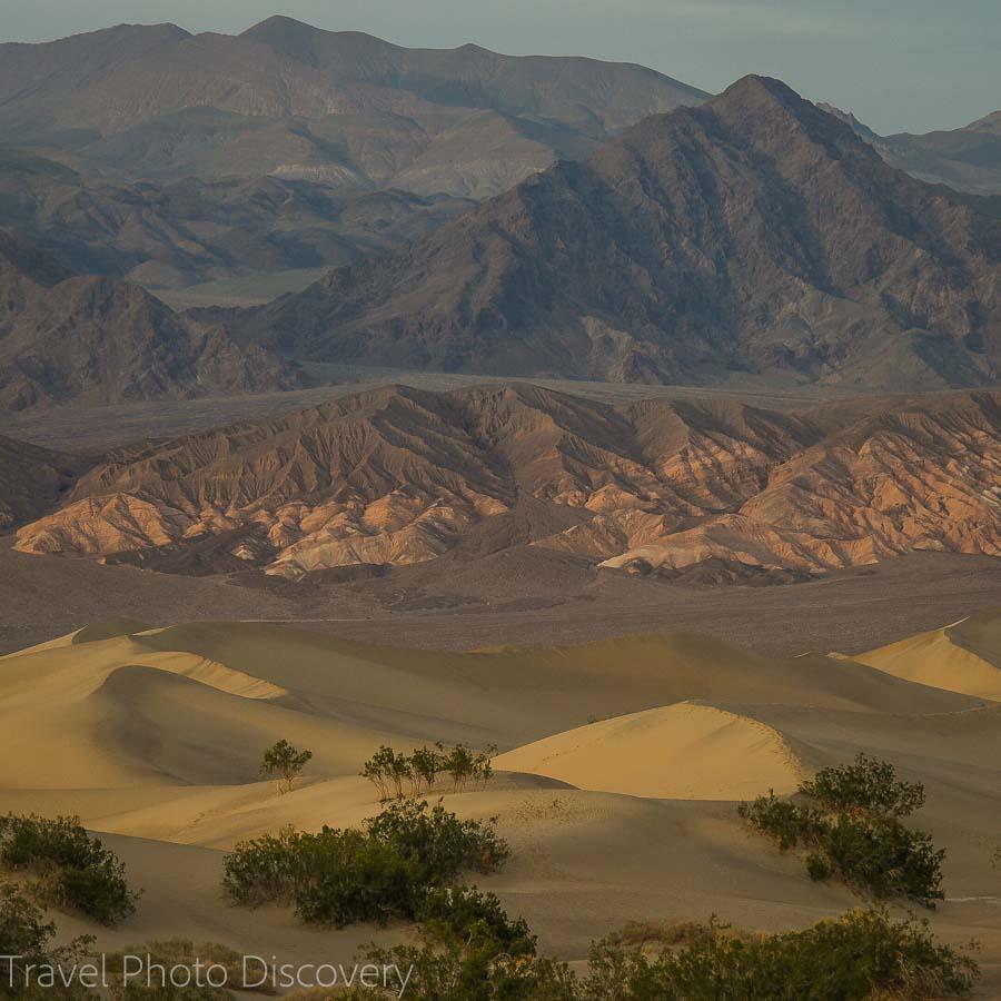 Mesquite dune flats Death Valley