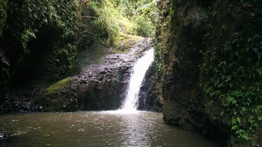 Maunawili Falls Things to do in Oahu