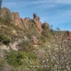 Exploring Pinnacles National Park