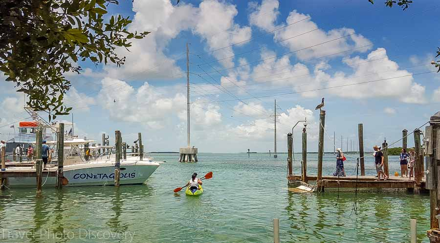 Robbies docks at Islamorada Key