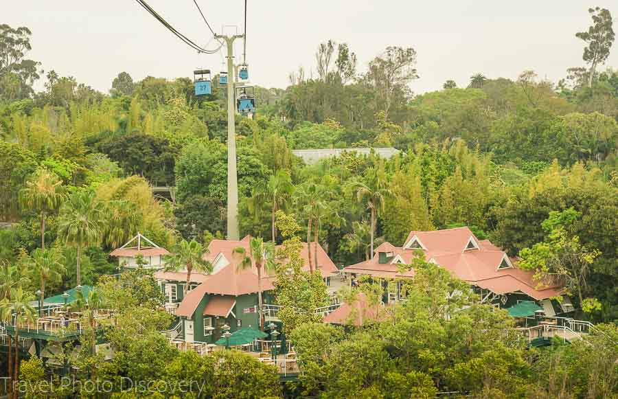 San Diego zoo views from above