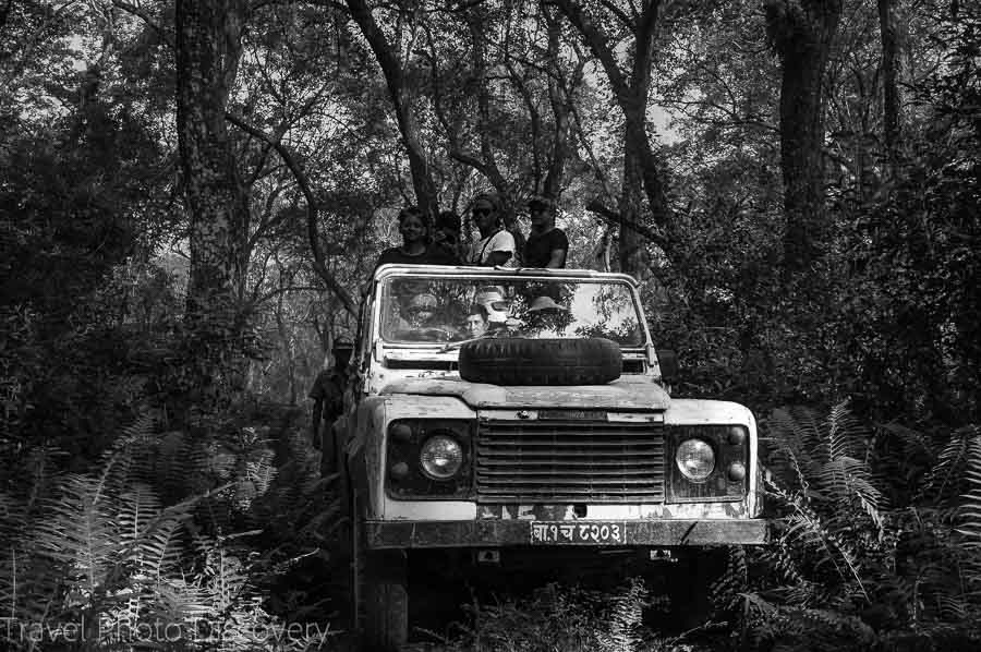 Safari experience at Chitwan National Park
