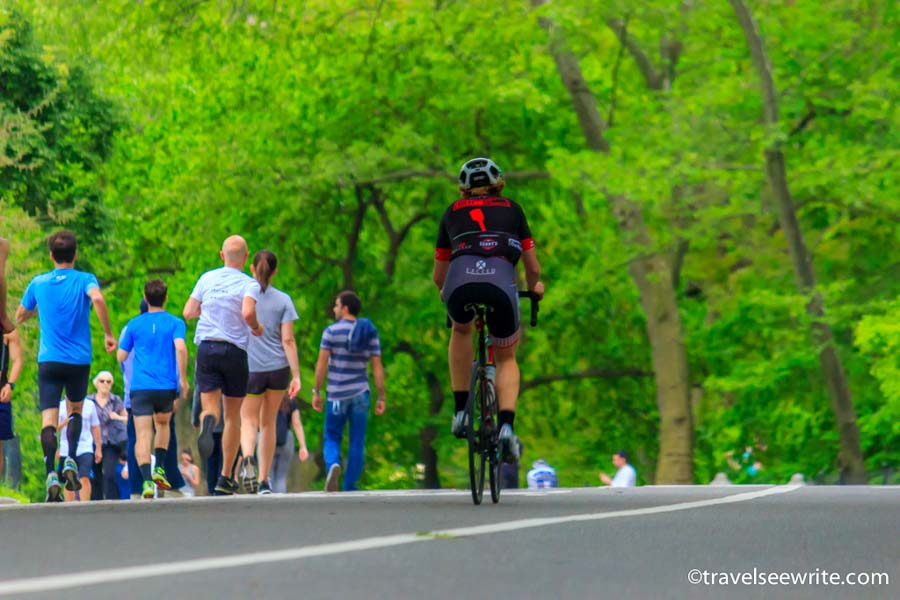 Central Park, New York What to see in New York City