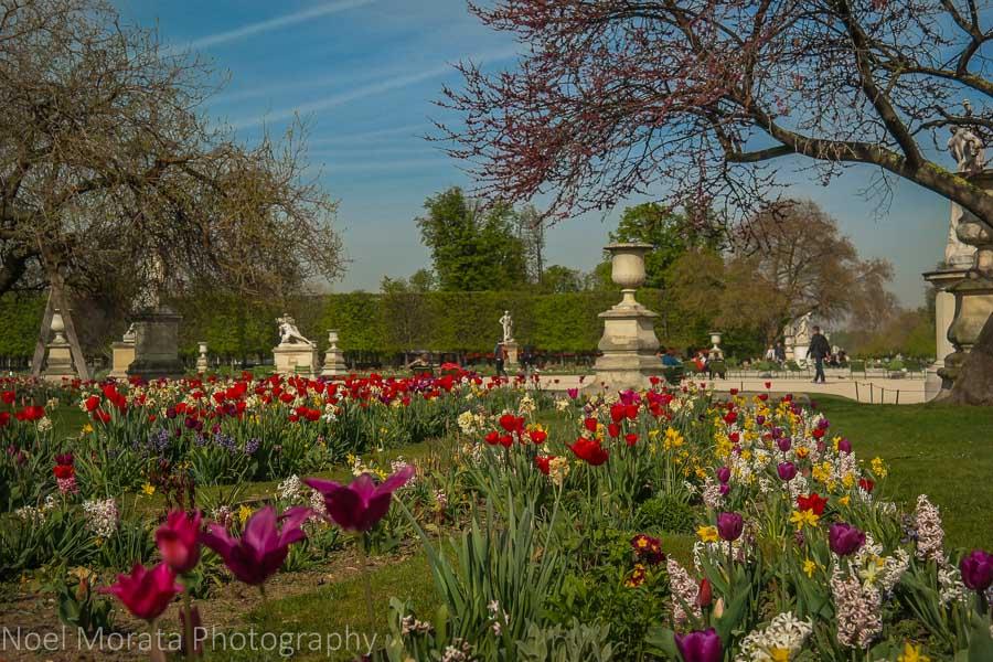 The jardin des Tuileries in Paris