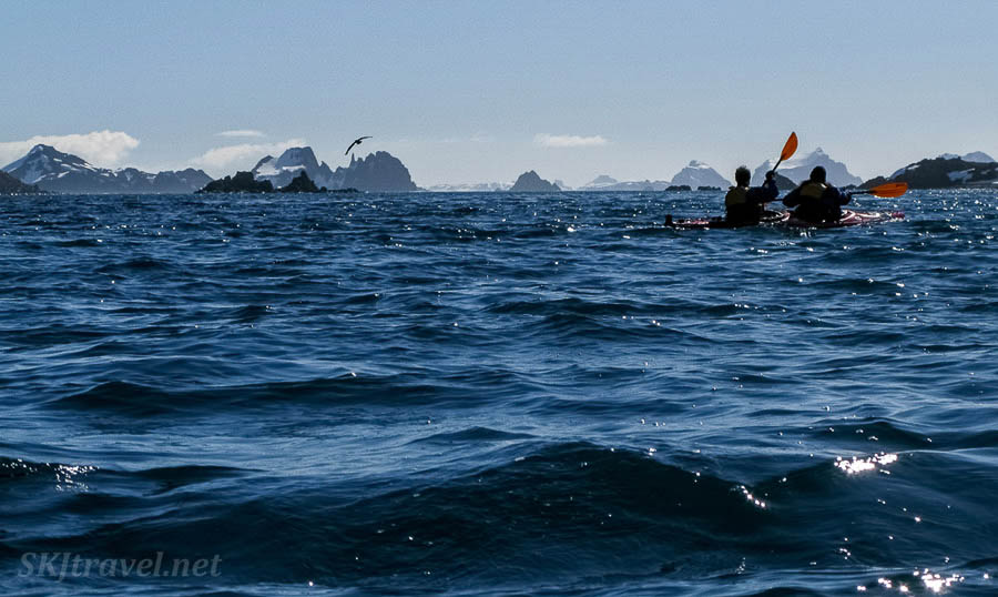 adventure Kayaking in Antarctica